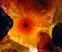 Glass_flower_1